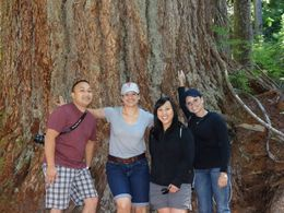 Calvin Vu, Stacey McHenry, Kim Vu, and Monet Shannon at Mount Rainier , Stacey M - October 2013
