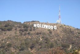 Hollywood Sign, Cat - January 2012