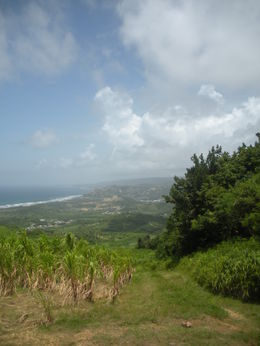 Photo of Barbados Best of Barbados Tour Looking down over Barbados
