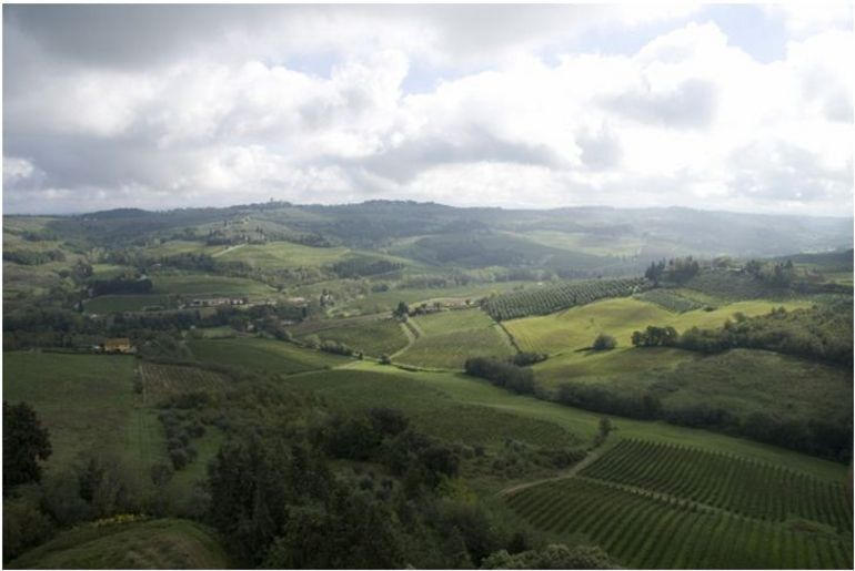 Valley in the Chianti region - Florence