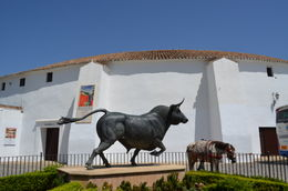 Photo of Costa del Sol Ronda and Tajo Gorge Day Trip from the Costa del Sol Plaza de Toros