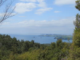 Photo of Auckland Rangitoto Island Tour from Auckland View 2