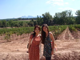 Photo of Barcelona Small-Group Montserrat Tour from Barcelona: Wine and Cheese Tasting with Optional Golf Round Wonderful experience at the authentic winery!