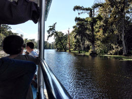 Photo of New Orleans Small-Group Swamp Boat Tour of Cajun Country from New Orleans boat ride