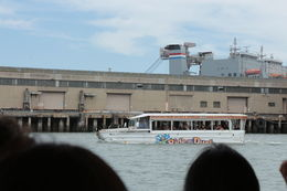 Photo of San Francisco San Francisco Duck Tour Duck in the Bay