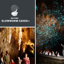 Photo of Auckland 3-Day Waitomo Caves, Rotorua and Taupo Trip from Auckland Glow worm grotto