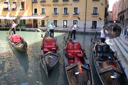 Photo of Venice Venice Walking Tour and Gondola Ride Load Up Time!