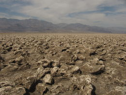 Photo of Las Vegas Death Valley Explorer Tour by Tour Trekker Devil's Golf Course