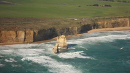 Photo of Melbourne Great Ocean Road Small-Group Eco-Tour from Melbourne SAM_4043