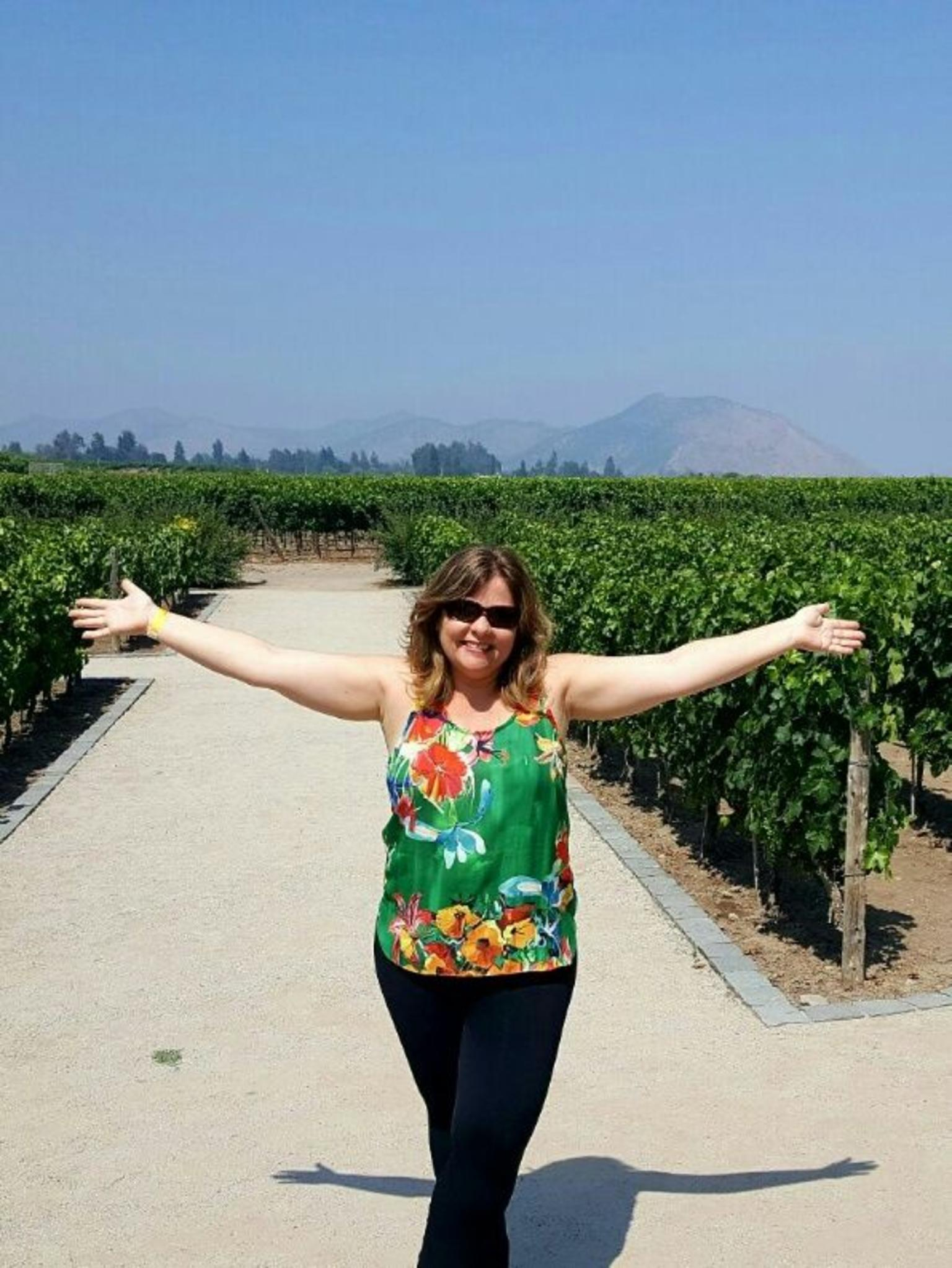 Concha y Toro Winery Tour from Santiago