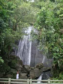 Photo of San Juan El Yunque Rainforest and Luquillo Beach from San Juan Cascada La Coca - El Yunque Rainforest