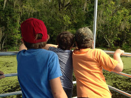 The boys checking out the swamp scenery., Rusty - November 2013