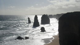 Photo of Melbourne Great Ocean Road Small-Group Eco-Tour from Melbourne SAM_4047