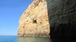 Photo of The Algarve Caves and Dolphin Watching Cruise Albufeira coast