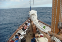 Photo of Fiji Fijian Islands and Snorkel Full-Day Whales Tale Cruise including Beach BBQ Lunch
