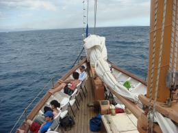 Photo of Fiji Fijian Islands and Snorkel Full-Day Whales Tale Cruise including Beach BBQ Lunch DSC02850