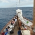 Foto von Fiji Fijian Islands and Snorkel Full-Day Whales Tale Cruise including Beach BBQ Lunch DSC02850
