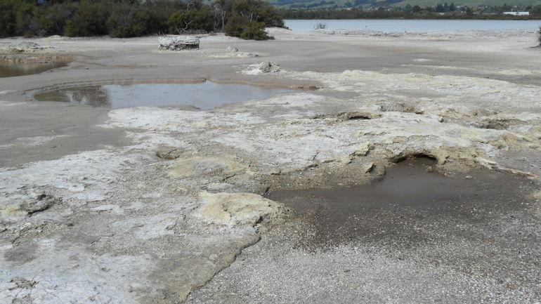 Gas Pools - Auckland