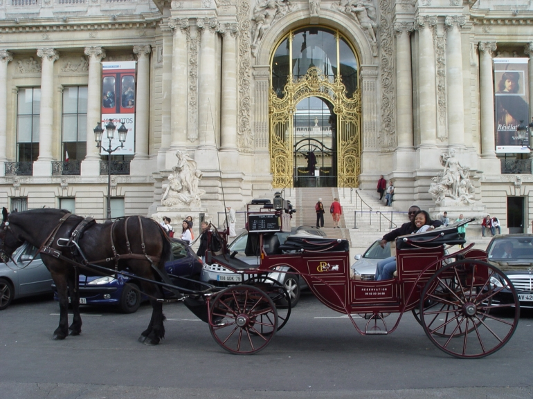 Horse and Carriage Ride - Paris