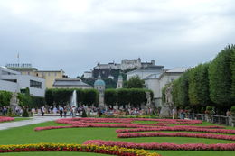 Photo of Salzburg Salzburg Historical Walking Tour Mirabelle gardens