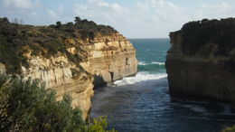 Photo of Melbourne Great Ocean Road Small-Group Eco-Tour from Melbourne SAM_4058