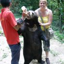 Photo of Kuala Lumpur Private Tour: Elephant Orphanage Sanctuary Day Tour from Kuala Lumpur Caroline and Sunny Bear