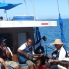 Foto von Fiji Fijian Islands and Snorkel Full-Day Whales Tale Cruise including Beach BBQ Lunch DSC02828