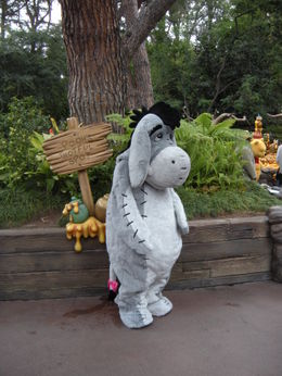 Eeyore, looking suitably forlorn!, LUCY K - June 2011