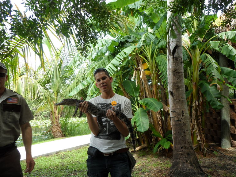 me with a little alligator - Miami