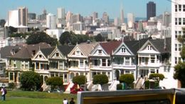 The Painted Ladies, RobC - August 2011