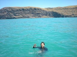 Swimming with Hector's Dolphins in Akaroa Harbour., Gustavo B - January 2010