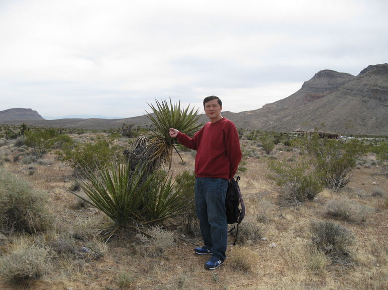 I and my desert tree friend - Las Vegas