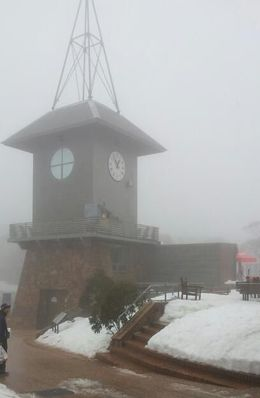 Photo of Melbourne Mt. Buller Ski Tour from Melbourne Pretty as a picture.