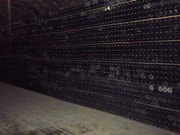Photo of Barcelona Sitges and Freixenet's Cava Wine Cellars Day Trip from Barcelona cava and more cava