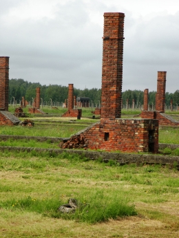 They tore down the wooden barracks, but didn't have time to remove the chimneys., JON H - June 2010
