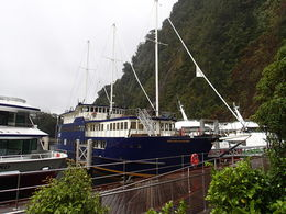 Milford Sound Mariner Overnight Cruise , Brittany T - October 2013