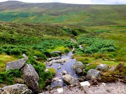 Photo of Dublin Wild Wicklow Tour including Glendalough from Dublin PS:I Love You / Bridge