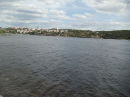 Photo of Stockholm Stockholm Bike Tour River view while biking