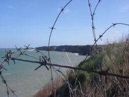 Photo of Bayeux Normandy Beaches Half-Day Trip from Bayeux View from Point du Hoc