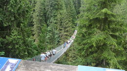 Too many people on the suspension bridge, almost scary sorry you won't let me upload some of my bear pictures , Marike P - July 2015