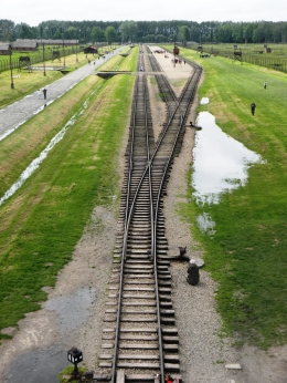 Photo of Krakow Auschwitz-Birkenau Museum Half-Day Trip from Krakow Railroad from the 'Gate of Death'.