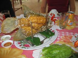This was the lunch we had on the Mekong Delta trip along with some giant prawns! If you don't eat fish take a packed lunch!, Stacey W - January 2008