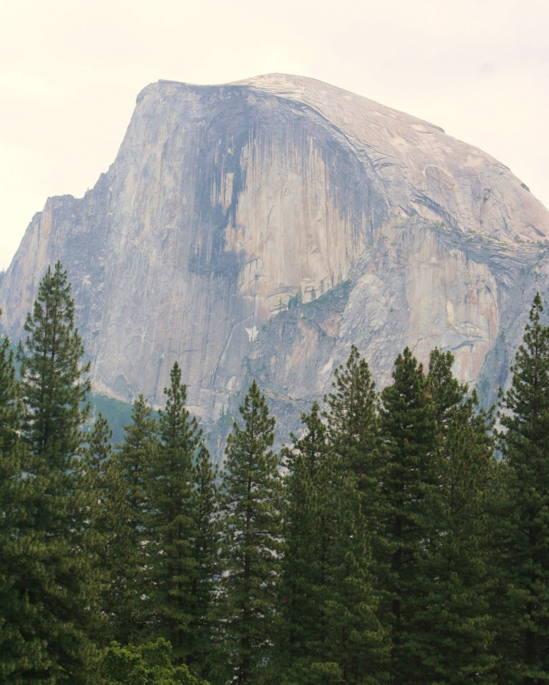 Half Dome - San Francisco