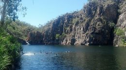 One of our stops was swimming at Edith Falls during day tour from Darwin to Katherine Gorge , Carmel T - November 2015