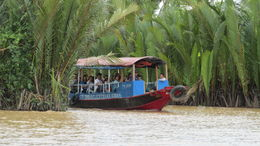 One of the ubiquitous tour boars on the Mekong River. , Dean W - October 2013