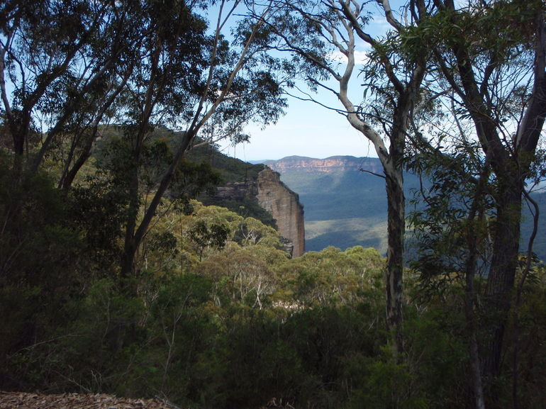 Blue Mountains. - Sydney