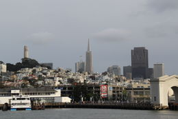 Photo of Downtown San Francisco docking from pier 43 1/2. , Eduardo L - May 2011
