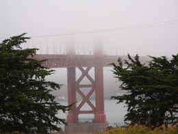 Photo of San Francisco Best of Golden Gate Bridge Tour with Optional Alcatraz Ticket DSC04424