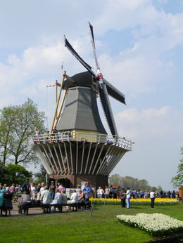 Windmill at the Keukenhof Gardens , Della T - July 2011