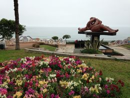 Photo of Lima Lima City Sightseeing Tour Love Park
